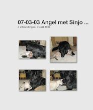 Photo: Angel snapt nog steeds niet veel van Sinjo.