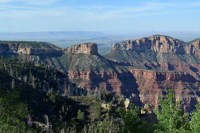 upper canyon