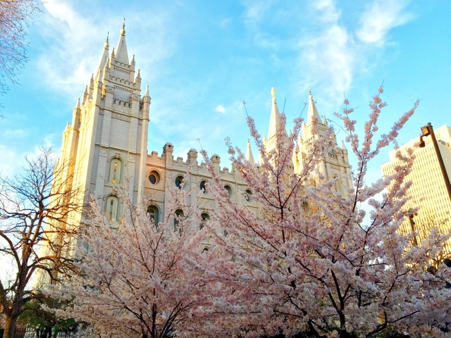SLC LDS Temple spring flowering trees