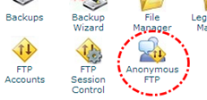 Icon anonymous FTP