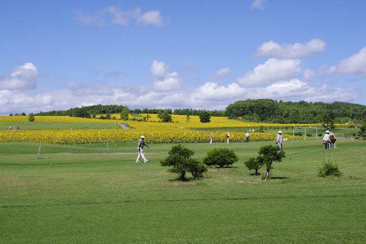 北竜町・ひまわりパークゴルフ場にて