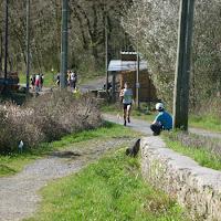 Senpereko Trail 2013