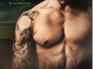 Review: Steadfast (True North #2) by Sarina Bowen