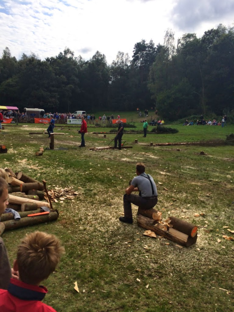 Houthakkerswedstrijd 2014 - Lage Vuursche - IMG_5889.JPG