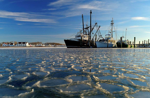 Surrounded by ice, commercial fishing boats are docked in their slips after more than a week's worth of frigid weather froze the harbor in Lake Montauk in Montauk, N.Y., on Sunday, 7 January 2018. Only a few commercial boats remain in Montauk harbor during the winter months fishing for species such as porgy, tilefish, monkfish and black sea bass. Photo: Julie Jacobson / AP Photo