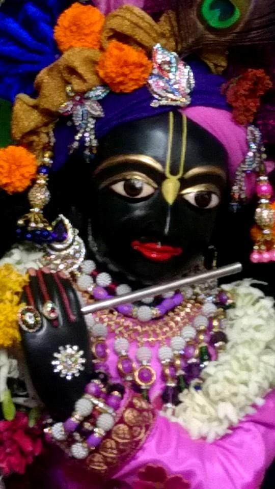 ISKCON Bhusawal Deity Darshan 13 Dec 2015 (2)