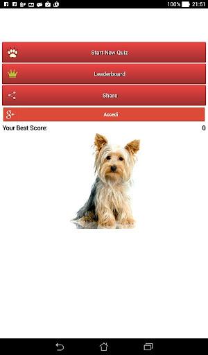 犬の品種に関するクイズ