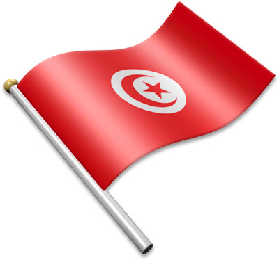 The Tunisian flag on a flagpole clipart image