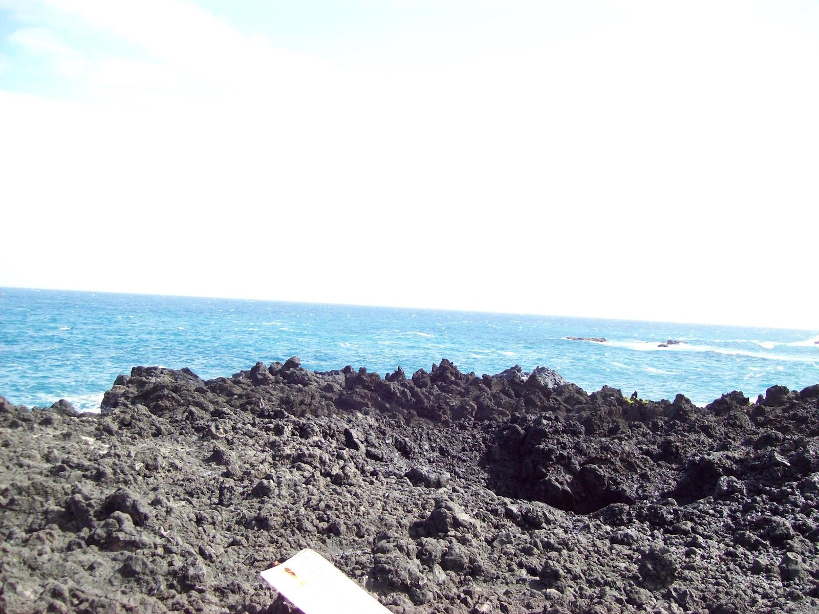 Hawaii Day 5 - 100_7473.JPG