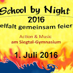 Schulfest SGE 01072016__072.jpg