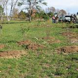 Hammo Planting - Shannon Schiesser - IMG_4954.JPG