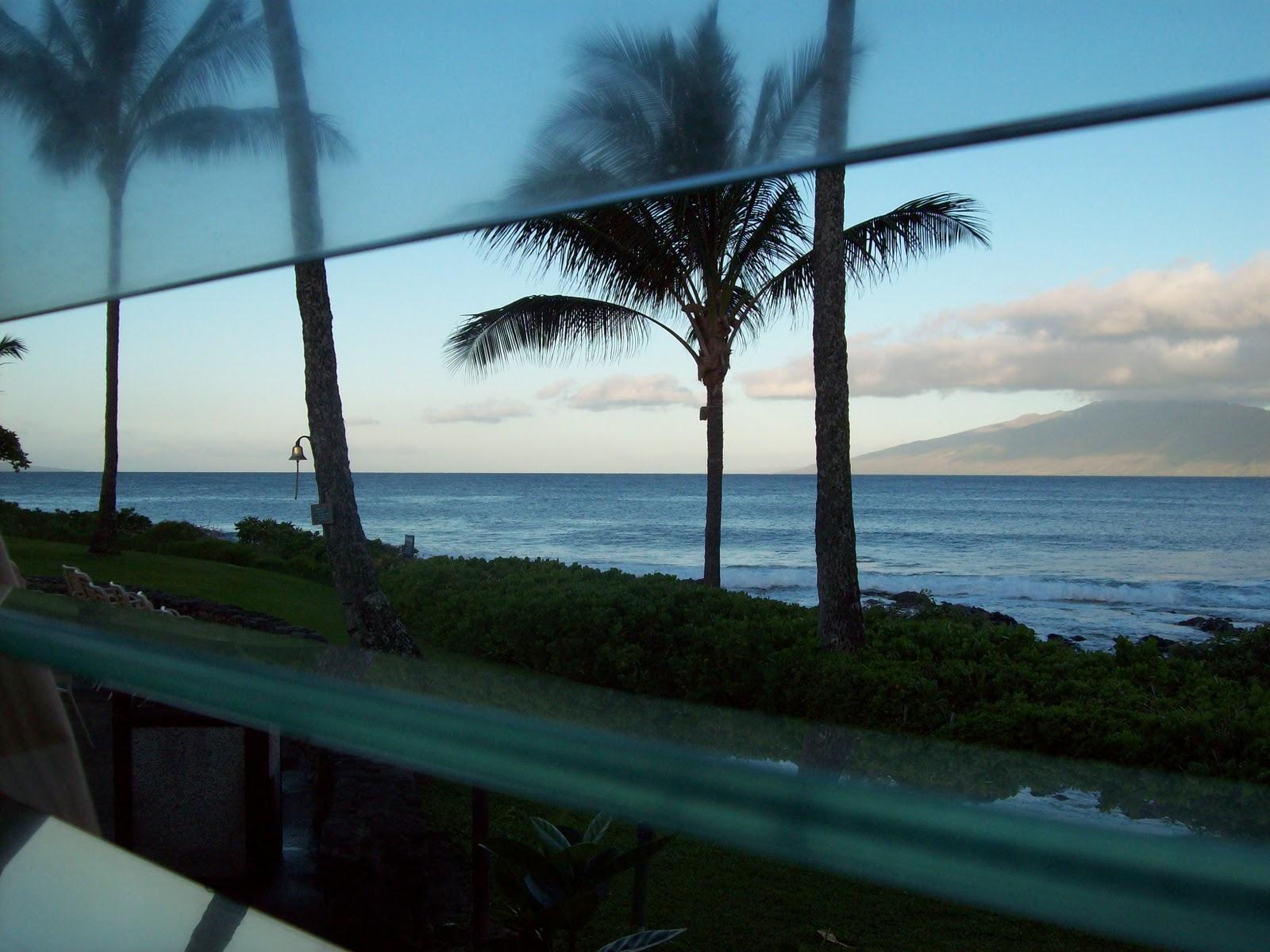 Hawaii Day 6 - 114_1681.JPG