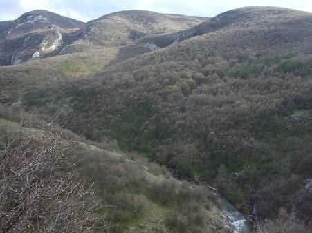 Горы возле Сокобани