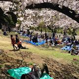 2014 Japan - Dag 7 - maureen-2014-04-05%2B13.01.52-0015.jpg