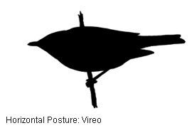 [ID_Posture_hz_1%5B4%5D]