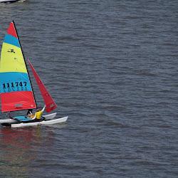 Dauphin Island Race 2013 024
