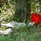 Bû et ses décharges sauvages en Forêt de Dreux (une déchetterie existe à moins de 150 m !). Bû (28), 2 septembre 2011. Photo : J.-M. Gayman