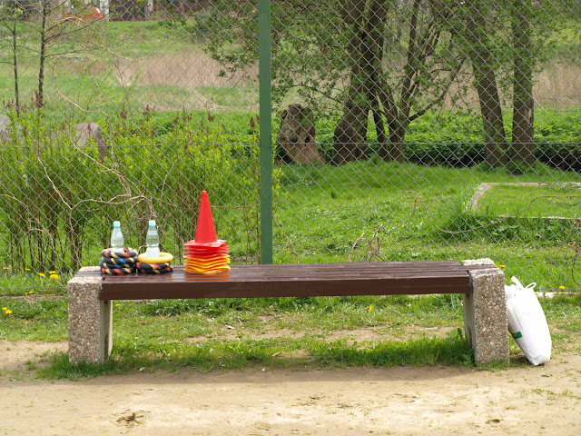 Piknik rodzinny - Przygoda z orientacją - 2010 - P5099182.JPG