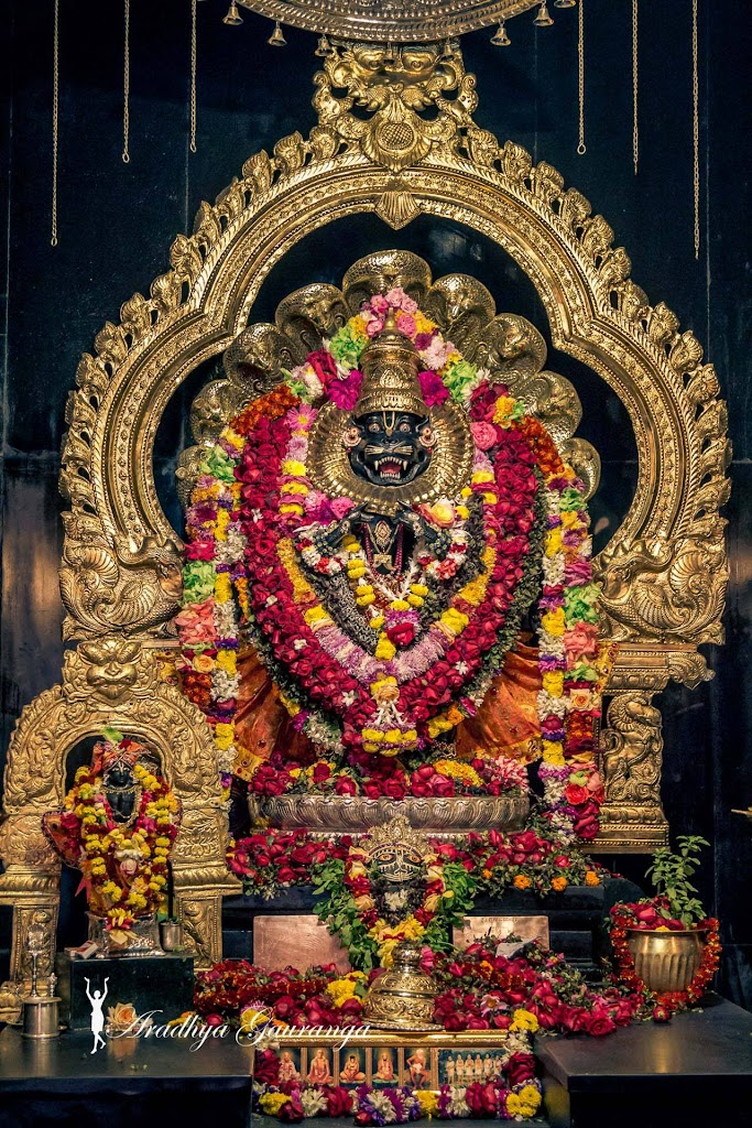 ISKCON Mayapur Deity Darshan 18 Jan 2017 (34)