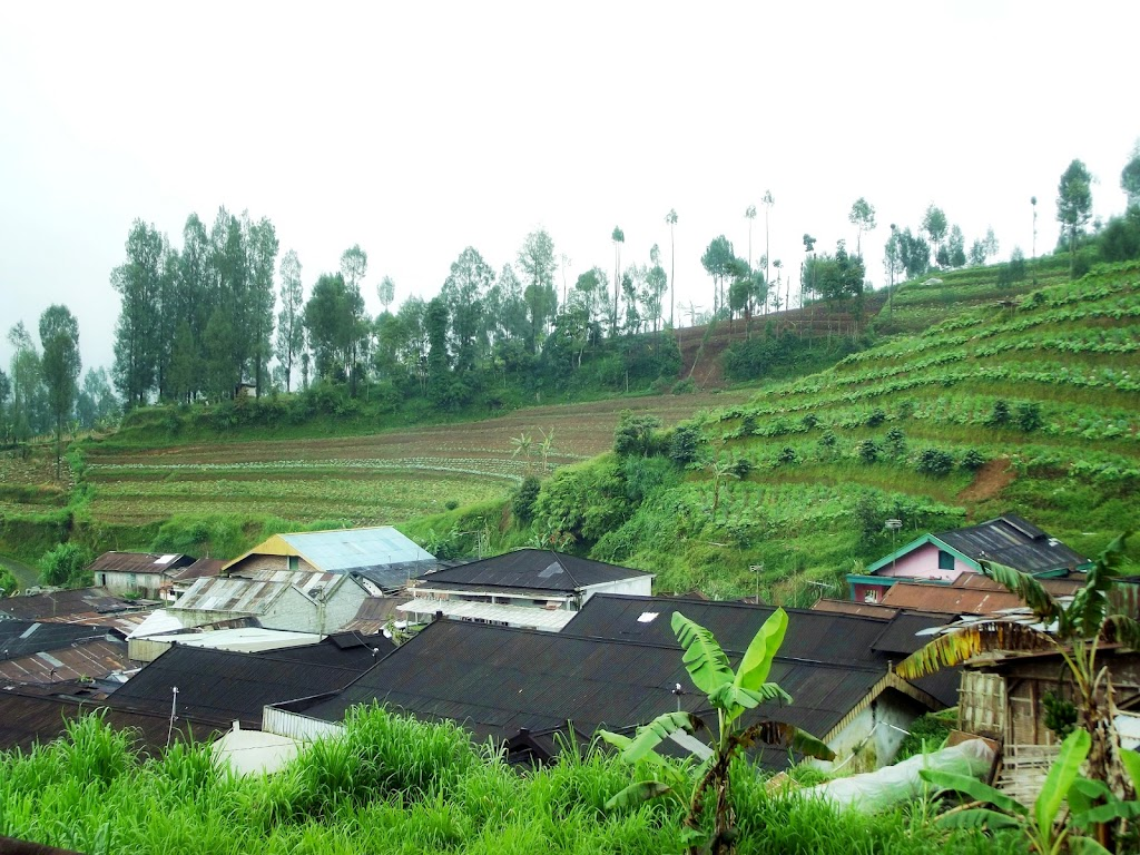 bass-ahmed-at-sumbing-mount-center-of-java-indonesia-29-31-03-2013-062