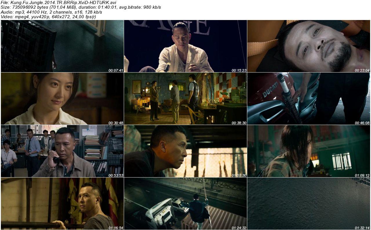 Kung Fu Jungle - 2014 BRRip XviD - Türkçe Dublaj Tek Link indir