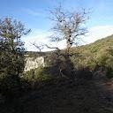 vue de la piste au niveau de la Grande Blaque vers l'ouest : la barre est à l'est de la combe du Fonse