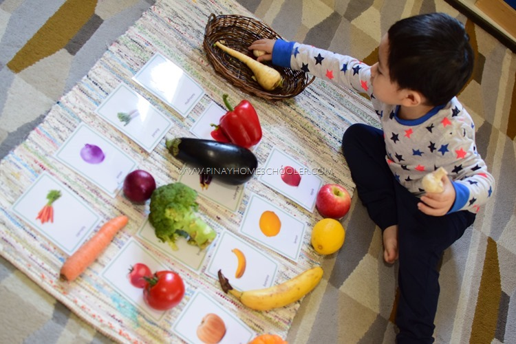 Montessori Fruit Cards