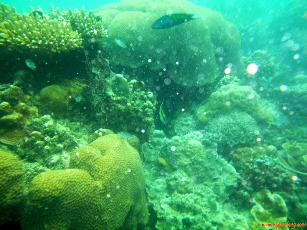 ngebolang-pulau-harapan-16-17-nov-2013-wa-21