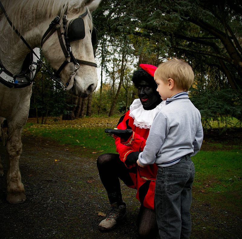 Sinterklaas 2013 DSC_5448.jpg