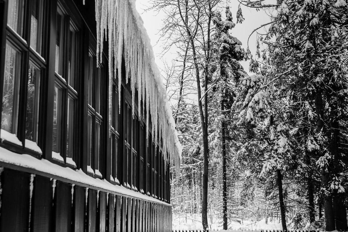 auf dem Weg zum Achtermann im Harz