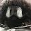 Brett Pettit's profile photo