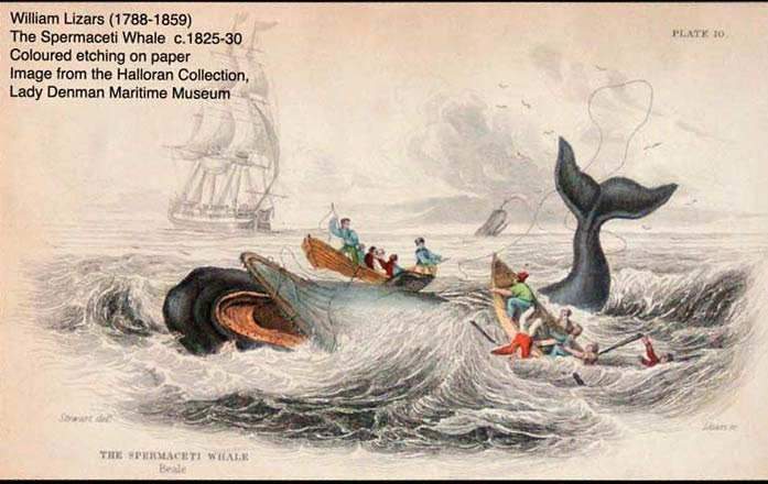 [historyofwhaling2%5B3%5D]