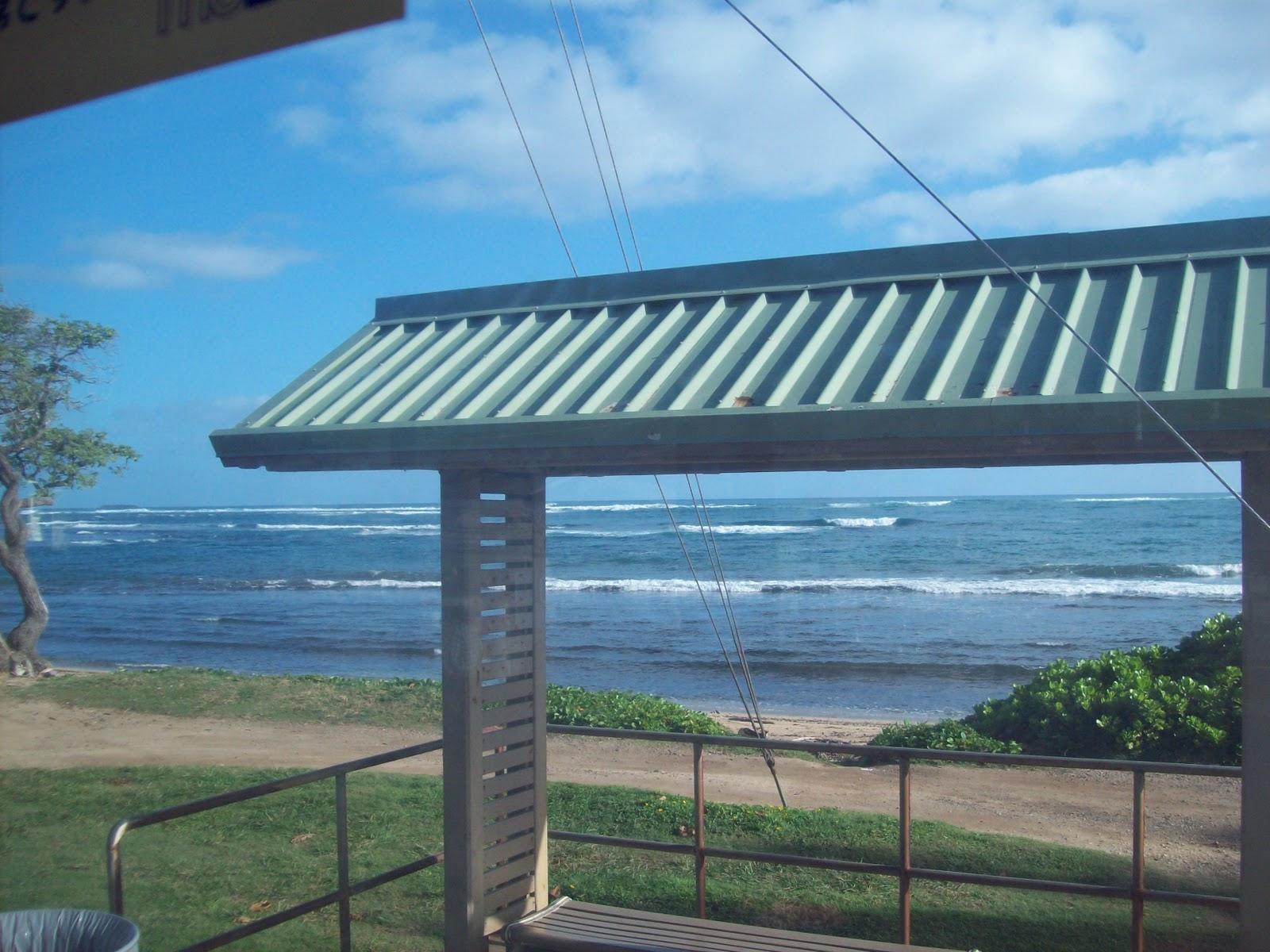 Hawaii Day 3 - 114_1068.JPG
