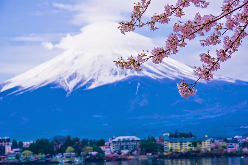 Lake kawaguchiko, cherry blossoms, Mt Fuji, Ubuyagasaki 7