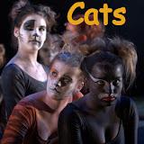 """""""CATS""""  OPLEIDINGSKLAS 2010"""