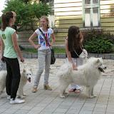 Studentsko popodne zavrsnih generacija 2011 - IMG_9455_resize.jpg
