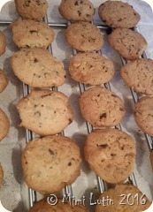 Truczebidule - Cookies sans gluten