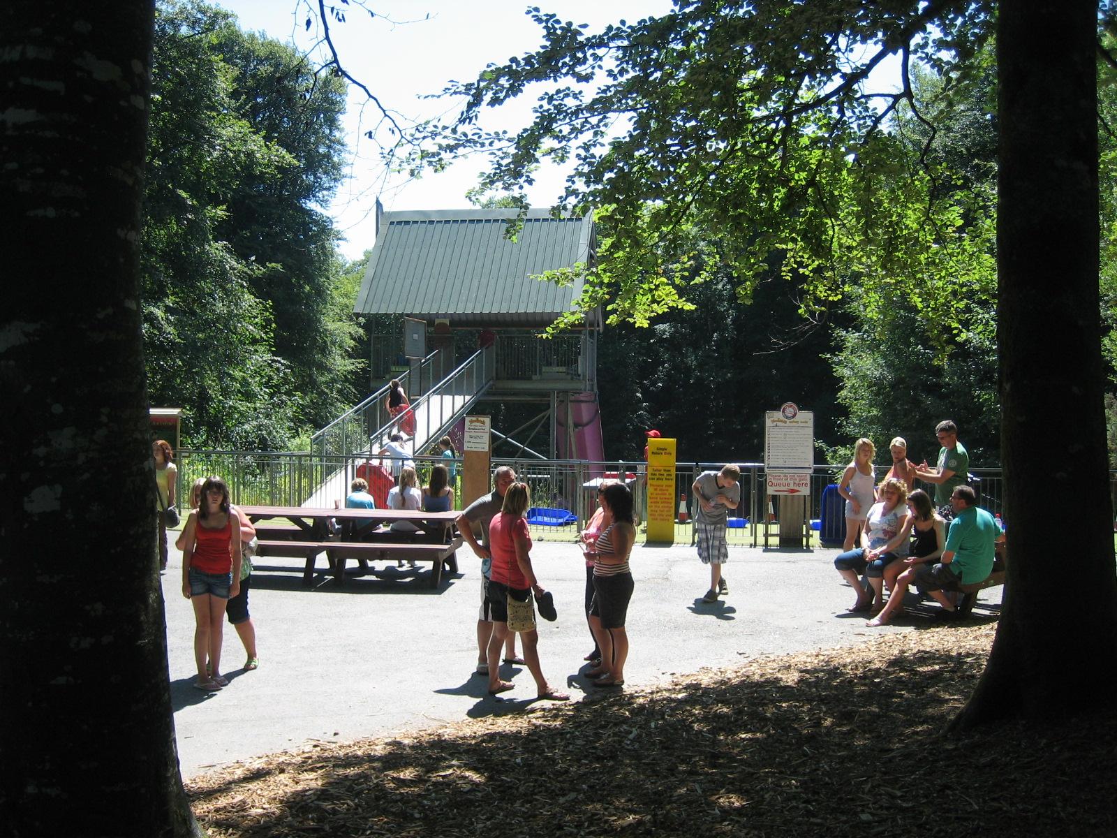 Woodlands - June 2010
