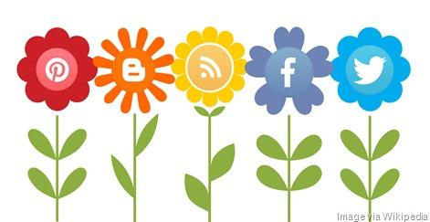 Growing_Social_Media_Influence