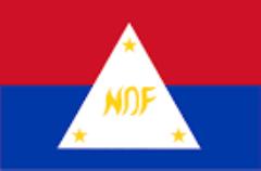 NDF Flag