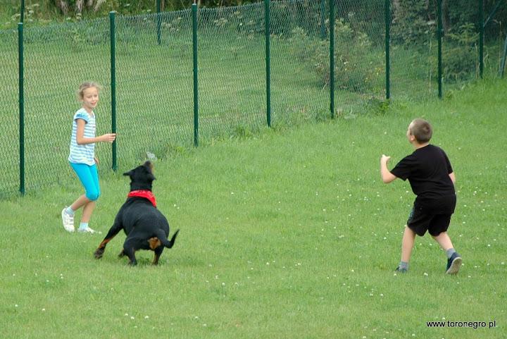 zabawa rottweilera z małymi dziećmi