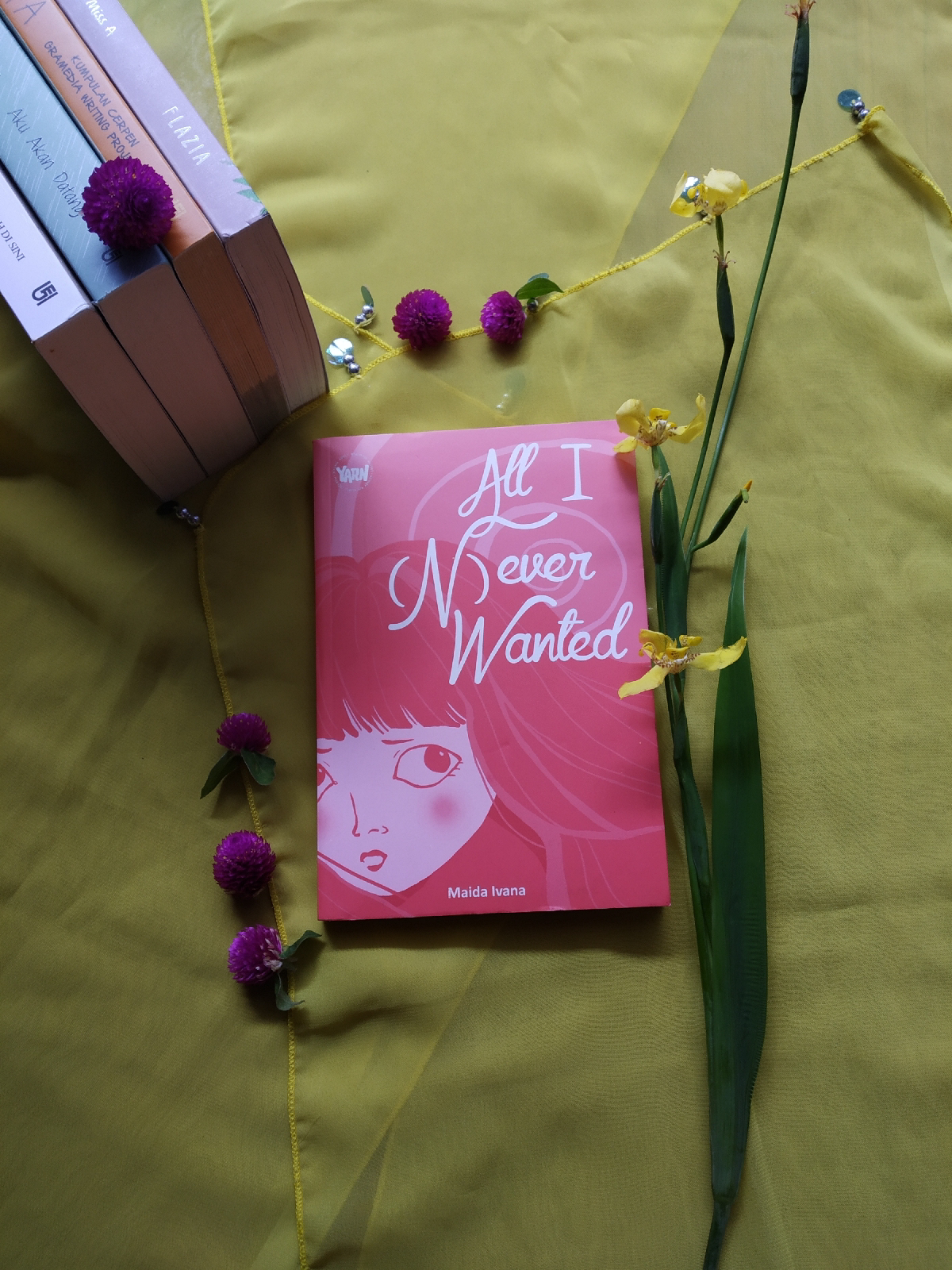 Review Novel All I (N)ever Wanted