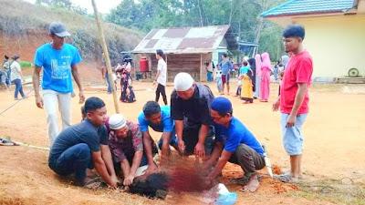 Alhamdulillah, Hewan Qurban di Sungai Abang Desa Siabu  Tahun ini Berjumlah 10 Ekor