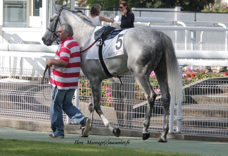 Photos Maisons-Laffitte 5-07-2015 - Page 2 IMG_2614