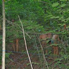 Taborjenje, Lahinja 2005 1. del - img_1050.jpg