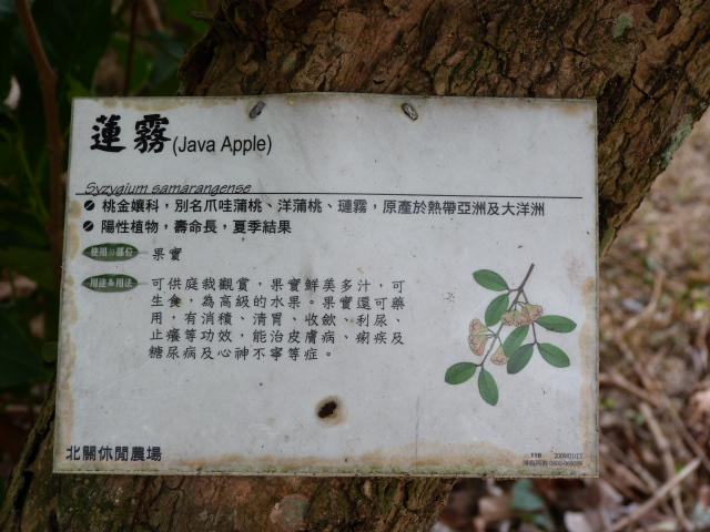 TAIWAN.Toucheng .musée du crabe situé au Pei Kan Resort, surfers,maison Japonaise du chef de gare - P1080801.JPG