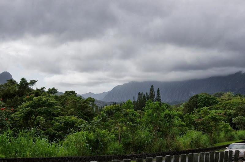 06-18-13 Waikiki, Coconut Island, Kaneohe Bay - IMGP6982.JPG