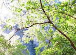 0025_Bungonia_2010-06-20.JPG