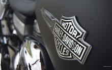 custom harley davidson 2008 motorbikes harleydavidson 1920x1200 wallpaper
