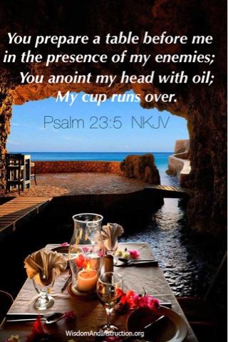 Wisdom and Instruction: Psalm 23:5 NKJV